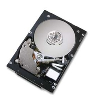 Harddisks - Hitachi 300GB SCSI 10000RPM 8MB 68PIN - HUS103030FL3600