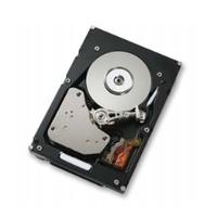 Harddisks - Hitachi 73GB SCSI 15000RPM 16MB 80PIN **Refurbished** - HUS151473VL3800