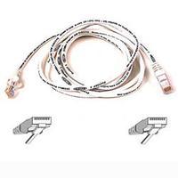 Netwerk kabels - Belkin UTP patch kabel 5 meter  moulded wit - A3L791B05M-WHTS